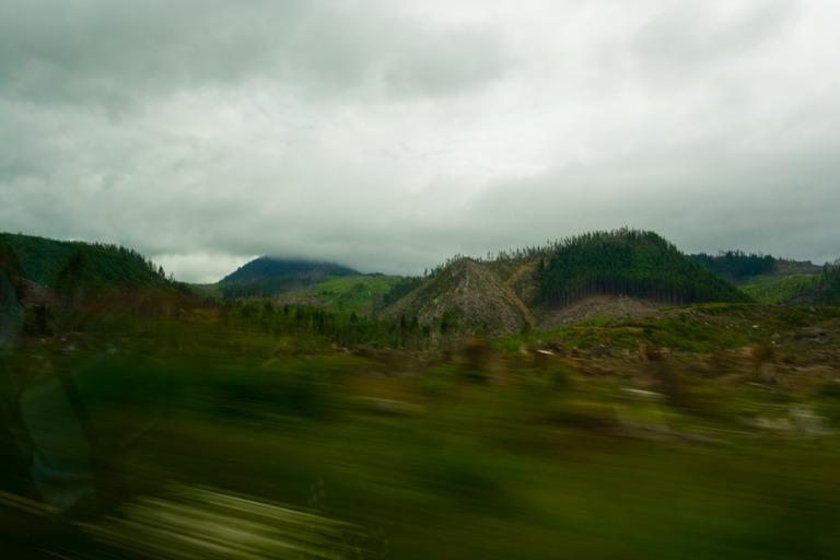a clearcut